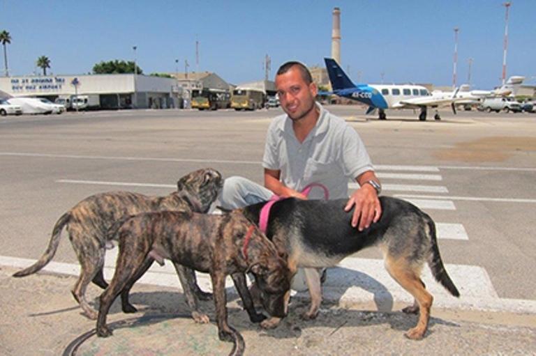 הכלבים בשדה התעופה. צילום: איליה ויינר