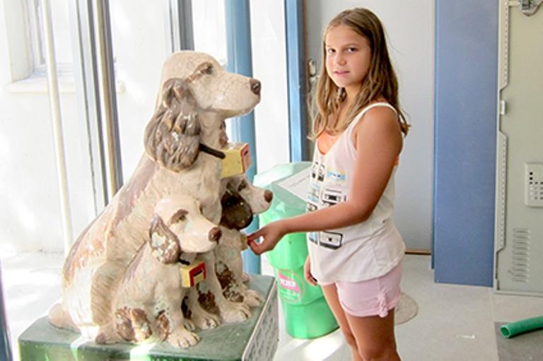 תרומה למען בעלי החיים