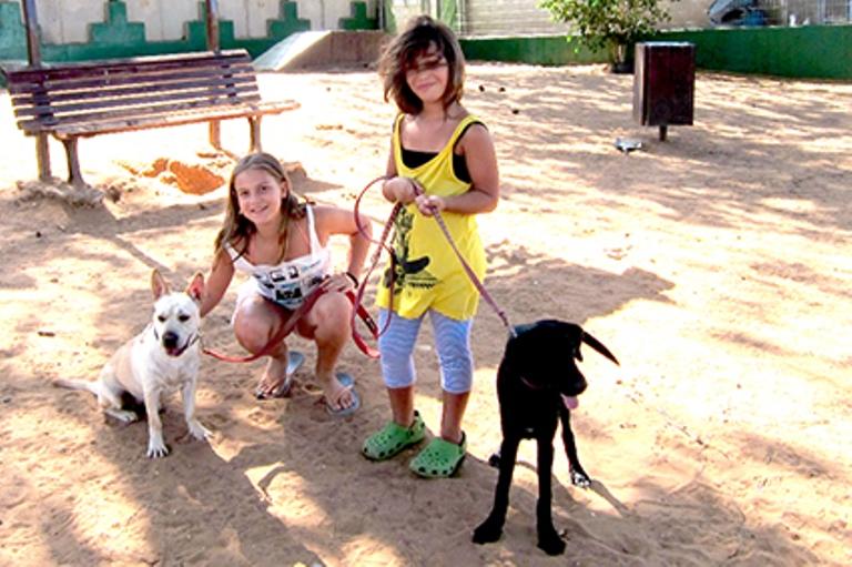 גילי ורוני איטינגר-טבצ'ניק מוציאות כלבים לטיול