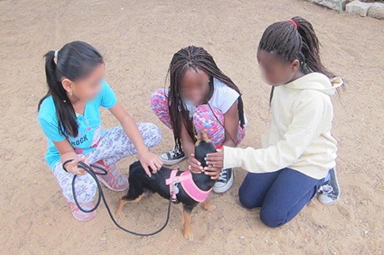 ילדי המהגרים משחקים עם הכלבים