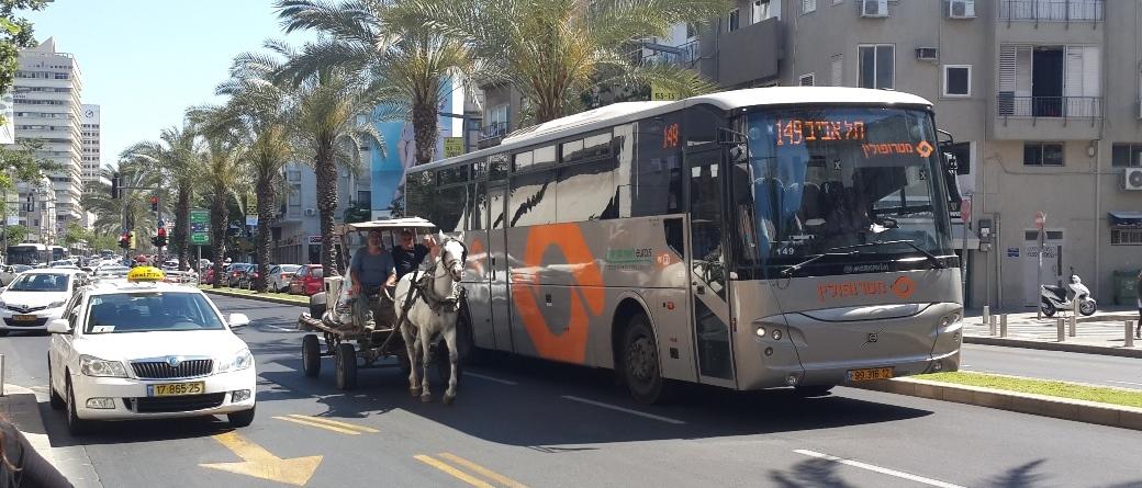 סכנה בטיחותית - סוס רתום לעגלה ברחובות תל אביב
