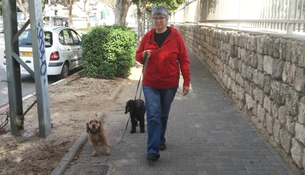מטיילים עם רצועה. ענבל לב וכלבותיה