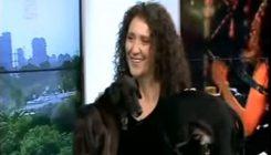אלונה דניאל מעודדת אימוץ כלבים