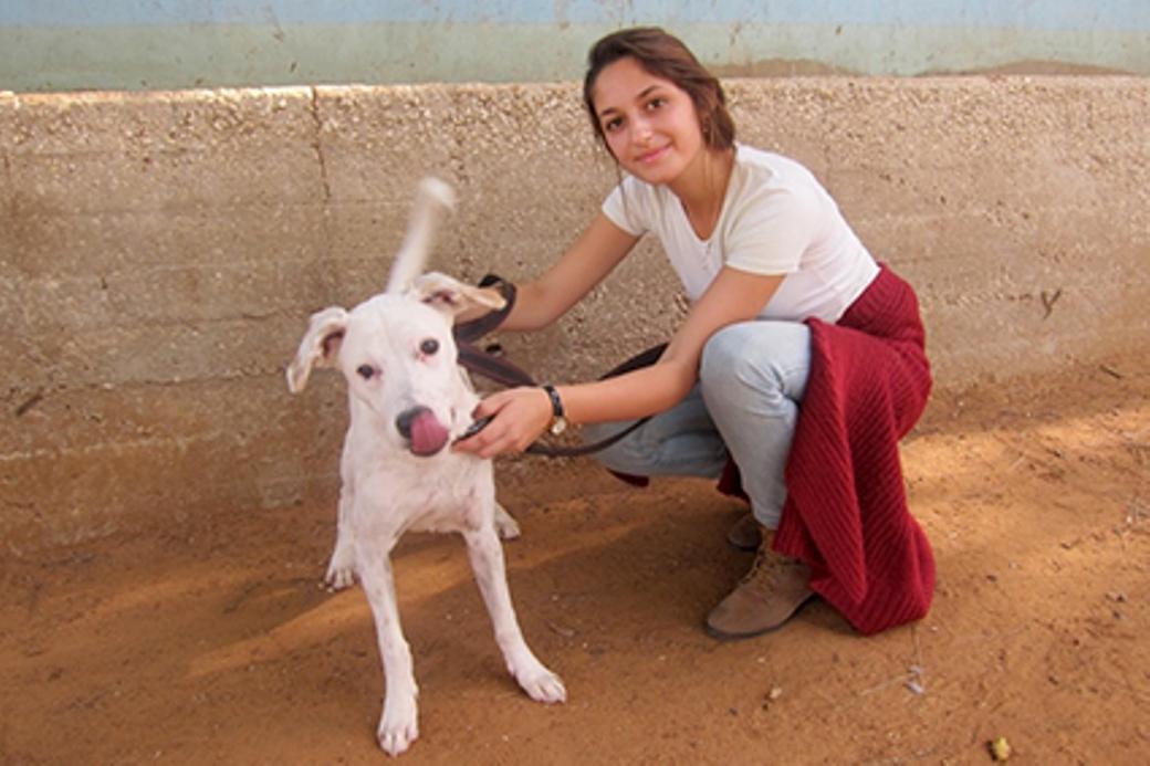 """ליאור יוגב, יוזמת """"חודש למען בעלי החיים"""" בתיכון עירוני ט בראשון לציון"""
