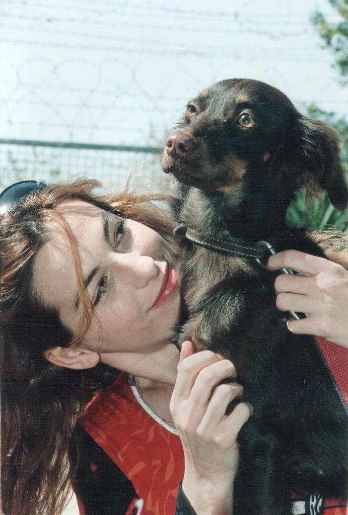 איילת זורר - אגודת צער בעלי חיים בישראל