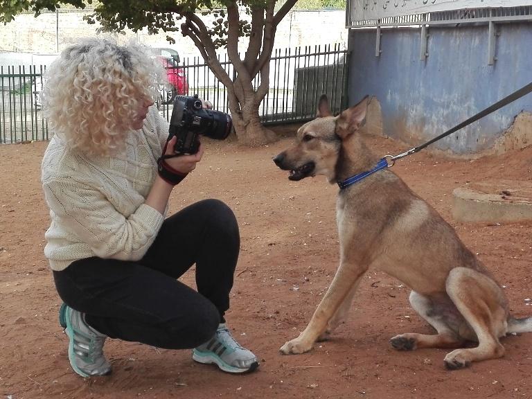 אירה פרוחורוב - התדנבות עם בעלי חיים - אגודת צער בעלי חיים בישראל
