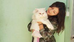 מתנדבים עם בעלי חיים - אגודת צער בעלי חיים בישראל