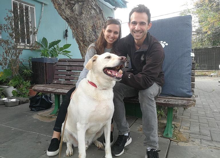 הכלב הפי אומץ - אגודת צער בעלי חיים בישראל