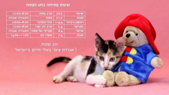 שעות פתיחה בחג הפסח - אגודת צער בעלי חיים בישראל