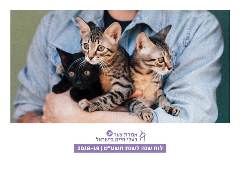 """לוח שנה לשנת תשע""""ט - אגודת צער בעלי חיים בישראל"""