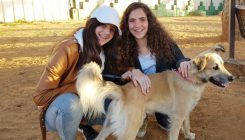 חגיגת בר מצווה באגודת צער בעלי חיים בישראל