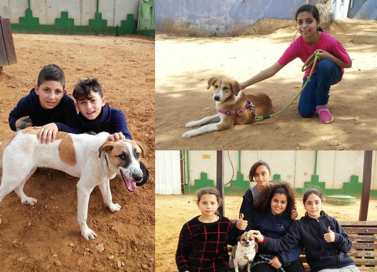 תלמידי בית הספר אל סלאם מקלנסווה – אגודת צער בעלי חיים בישראל