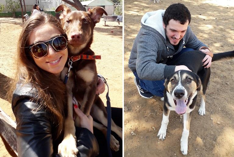 עובדי חברת סלינה בטיול עם הכלבים - אגודת צער בעלי חיים בישראל