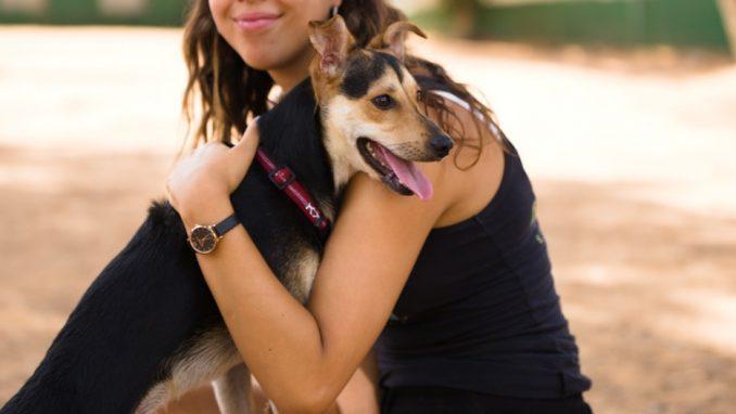 פיטר – כלב לאימוץ – אגודת צער בעלי חיים בישראל