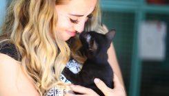 אימוץ חתולים שחורים - אגודת צער בעלי חיים בישראל