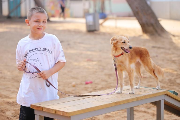 טיול עם כלבים - אגודת צער בעלי חיים בישראל
