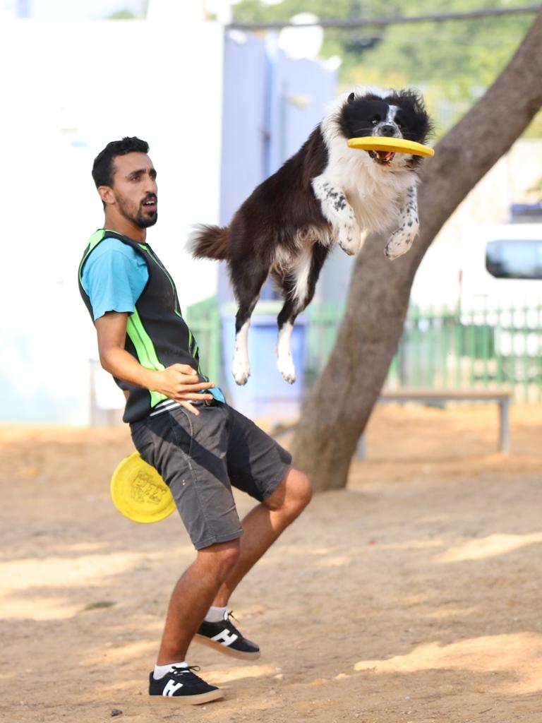יעקב גדסי והכלב פאזל - אגודת צער בעלי חיים בישראל
