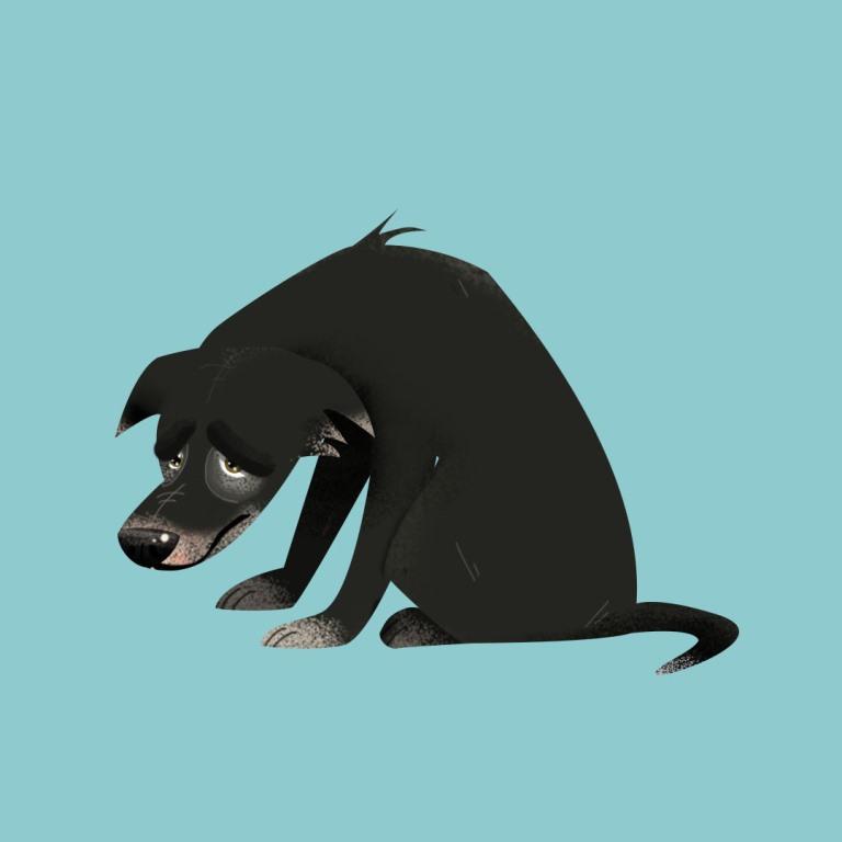 קים – כלבה לאימוץ – אגודת צער בעלי חיים בישראל – איור: קטיה גאיה קרבץ
