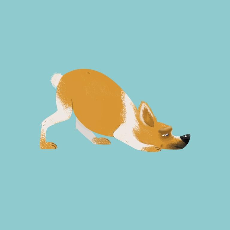 שוקו – כלב לאימוץ – אגודת צער בעלי חיים בישראל – איור: קטיה גאיה קרבץ