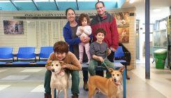 אימוץ מרגו ומוניק - אגודת צער בעלי חיים בישראל