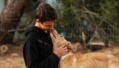 מתנדבים עם בעלי חיים - אגודת צער בעלי חיים בישראל - צילום: מאיה סיני