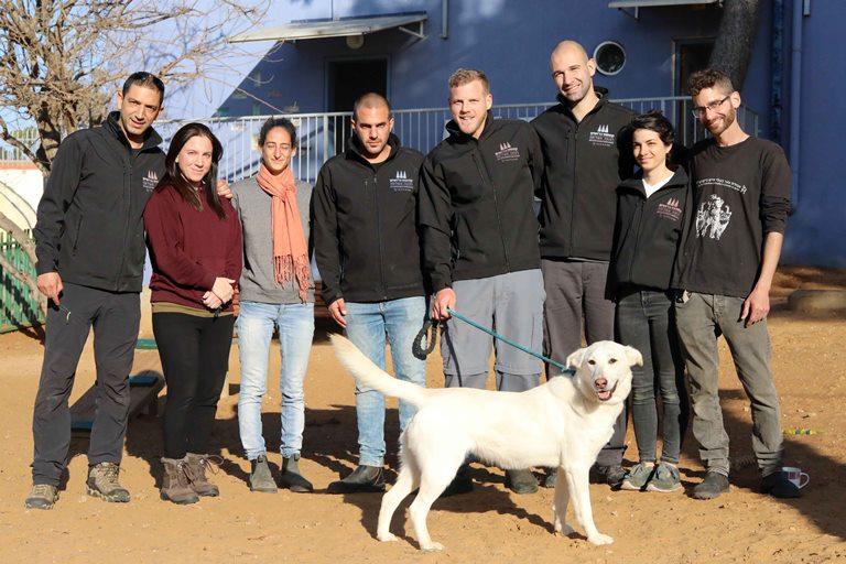 מאלפי קמפוס ברושים - אוניברסיטת תל אביב - אגודת צער בעלי חיים בישראל
