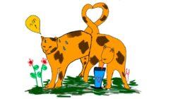 צמאים ברחוב - השאירו מים לחתולים - אגודת צער בעלי חיים בישראל - איור: אמילי נשר