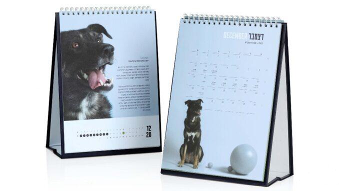 """לוח שנה לשנת תשפ""""א - אגודת צער בעלי חיים בישראל - צילום: vipdesign.co.il"""