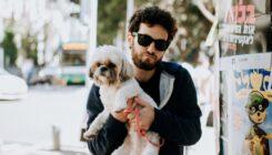 קמפיין גרילה - כלבים גזעיים - אגודת צער בעלי חיים בישראל - צילום: טובי הררי